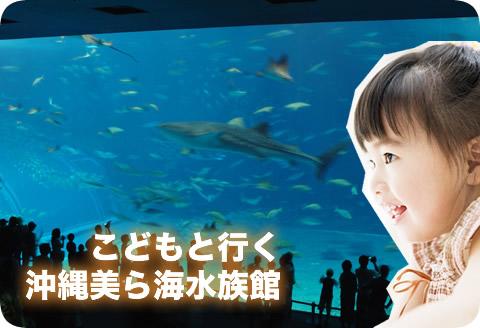 こどもと行く 沖縄美ら海水族館